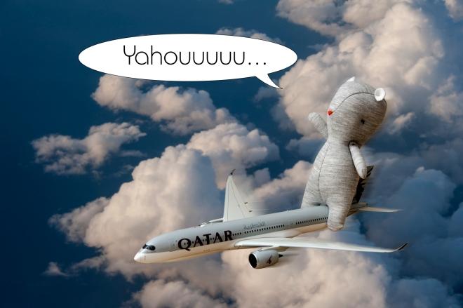 1-louis-voyage avion