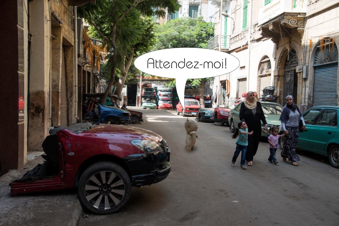 5-louis rue dalexandrie egypte